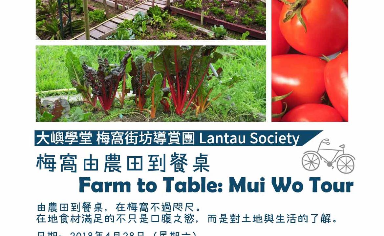 梅窩由農田到餐桌 Mui Wo Farm to Table Tour