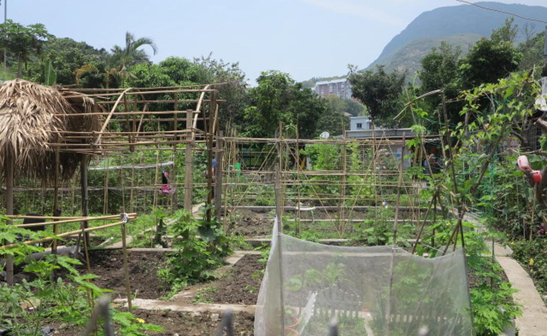 城市農夫田 Urban Farmland