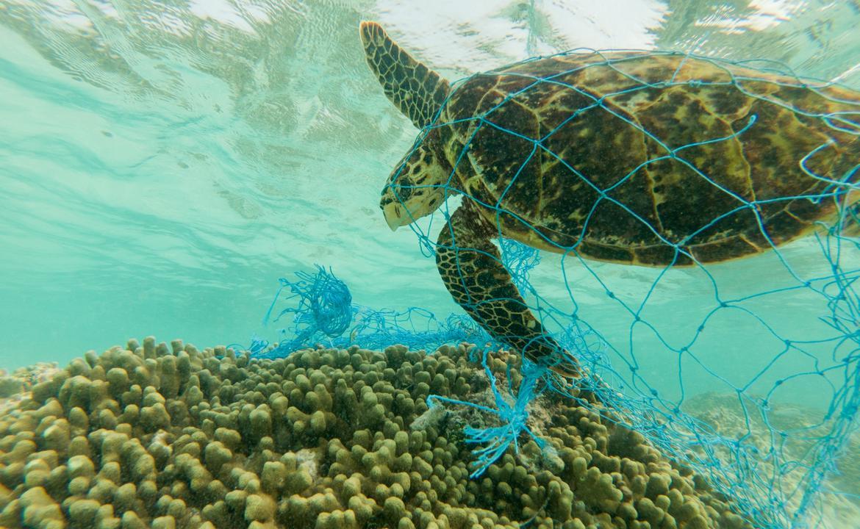 環保基金—綠號院線9月14日《塑膠海洋》放映