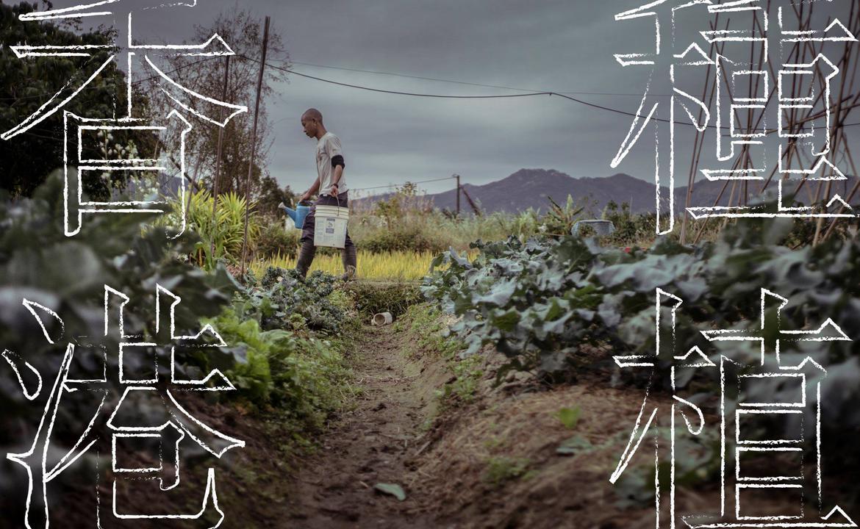 《種植香港》第三期發佈會
