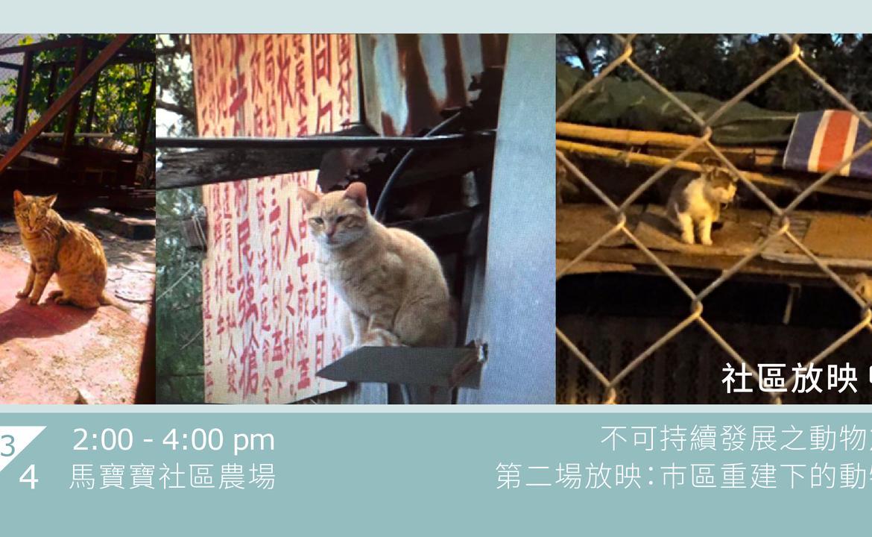 馬寶寶社區放映【 不可持續發展之動物篇 】第二場放映:巿區重建下的動物