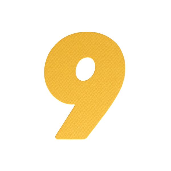 No.394レイヤーPカードDC 数字9
