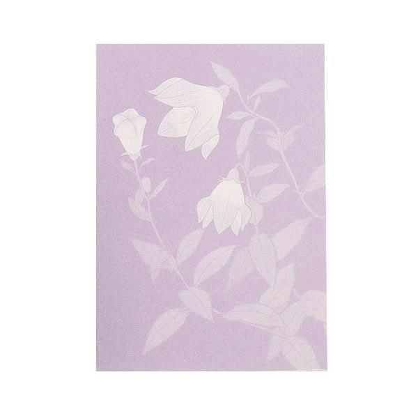 No.631野の花 キキョウ Pカード