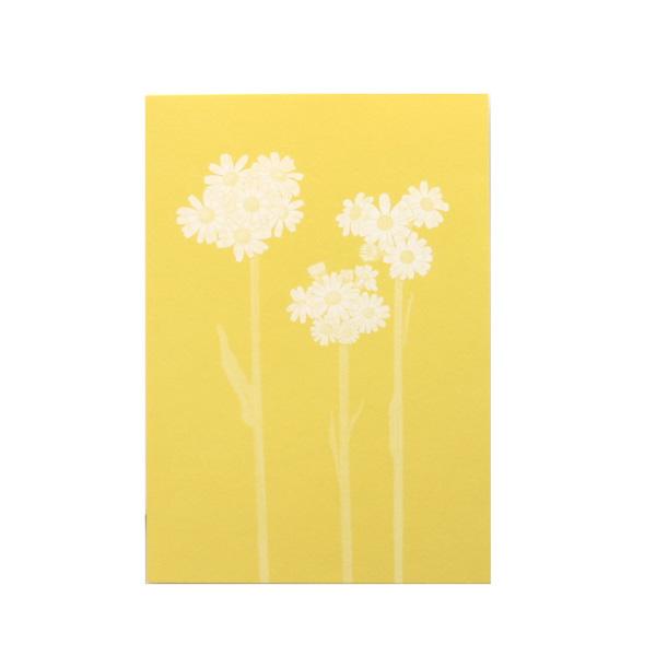 No.631野の花 オカオグルマ Pカード