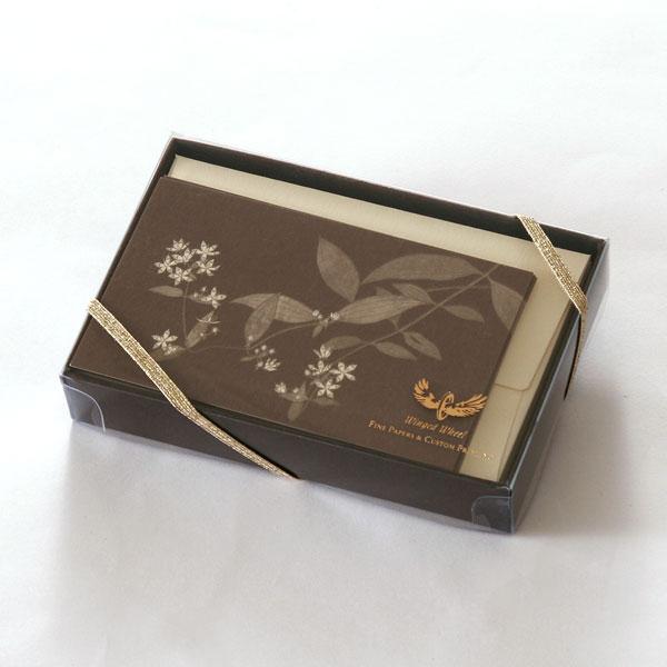 No.631アケボノソウミニカードセット ギフト