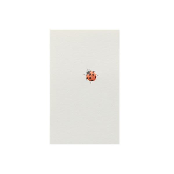No.700てんとう虫ネームカード