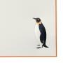ペンギンセット