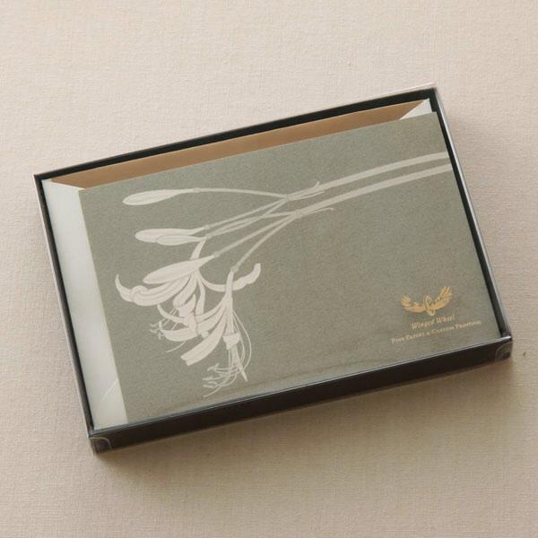 オオキツネノカミソリPカードセット ボックス