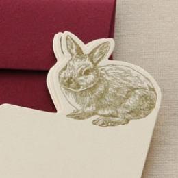 ウサギ セット