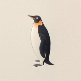 No.700ペンギン  の名刺