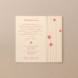 カード SW213