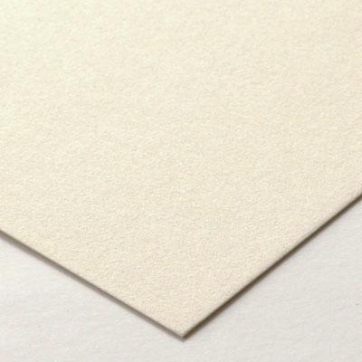 No.700カメレオンネームカード