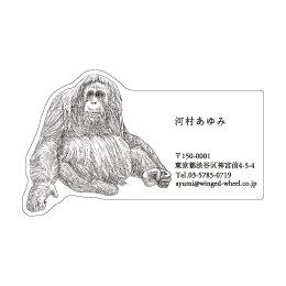 No.602 オランウータンの名刺