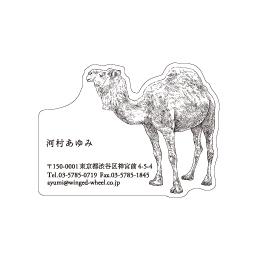 No.602 ラクダの名刺
