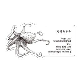 No.602 タコの名刺