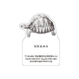 No.602 カメの名刺
