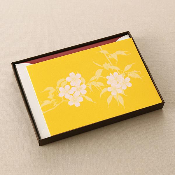 ヤマザクラPカードセット ボックス