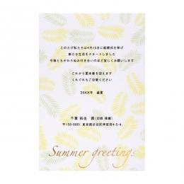 はがき SKI_24(ヤシの葉)文面印刷あり