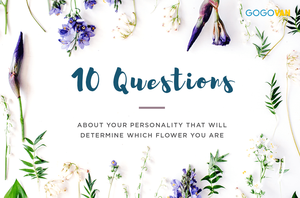 ggv_floral quiz