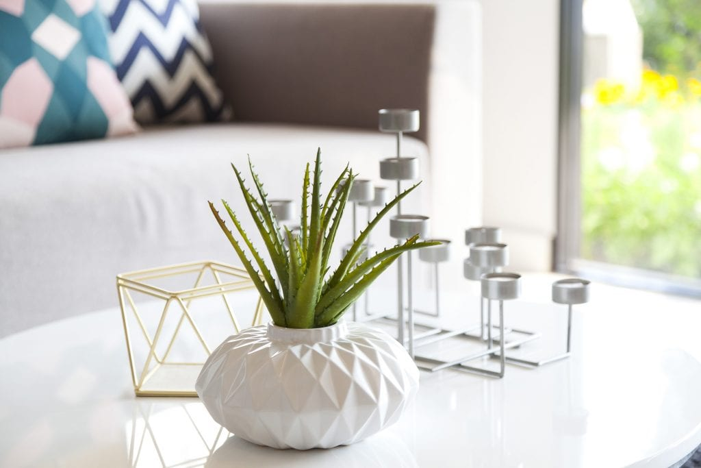Artificial Plants in your home can help