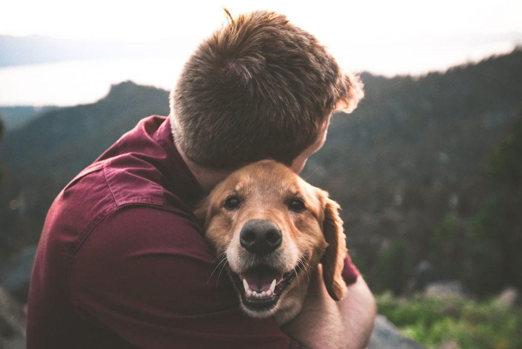 Volunteer to raise awareness against cruelty towards animals