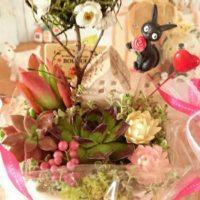 観葉植物を贈り物で使おう!選び方とおすすめの品種3選の画像