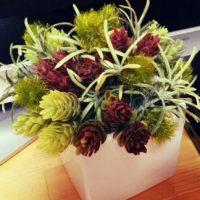 本物そっくりで風水効果も?作り物の観葉植物をご紹介!の画像
