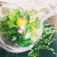 本物そっくりな造花の観葉植物、買うなら通販が便利の画像