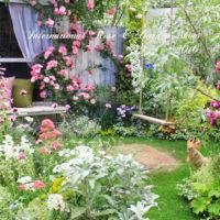 100万株の薔薇と庭。国際バラとガーデニングショウにいってみよう。の画像