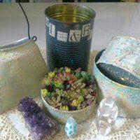 エケベリアのリメ缶を作ってみよう!の画像