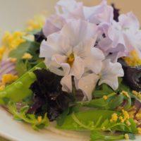 食べられるお花「エディブルフラワー」で、素敵な食卓を演出しよう!の画像