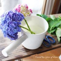 簡単DIY!vol.10「切り花の紫陽花を長持ちさせる」方法の画像