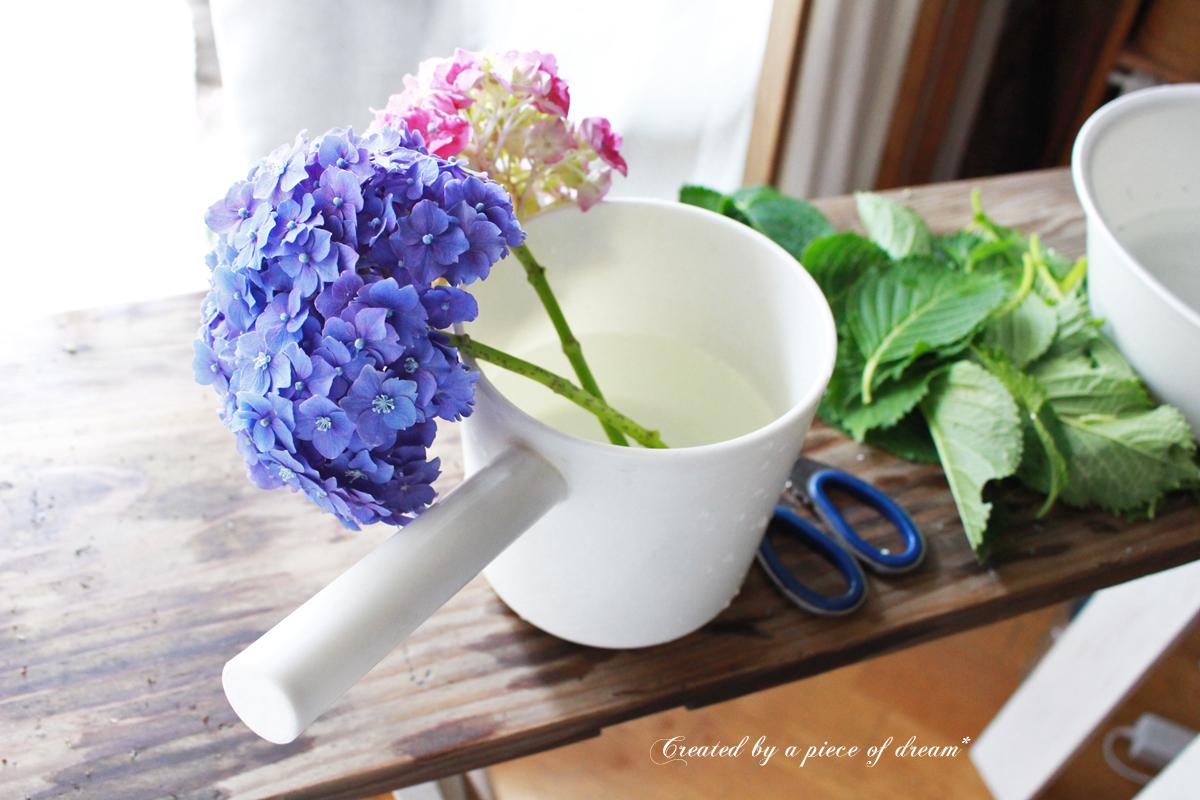 簡単DIY!vol.10「切り花の紫陽花を長持ちさせる」方法
