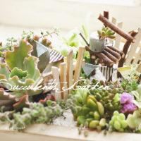 簡単DIY!vol.11多肉のお庭「小枝のイス」作り方の画像