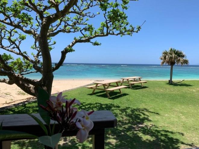 奄美の美しい海岸風景。こんな場所で仕事をすることも