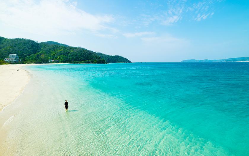 南国 奄美大島、フリーランスが...