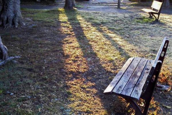 朝日のベンチ