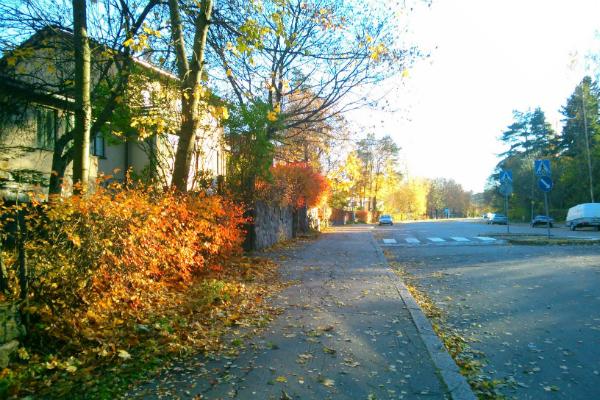 フィンランドの景色4