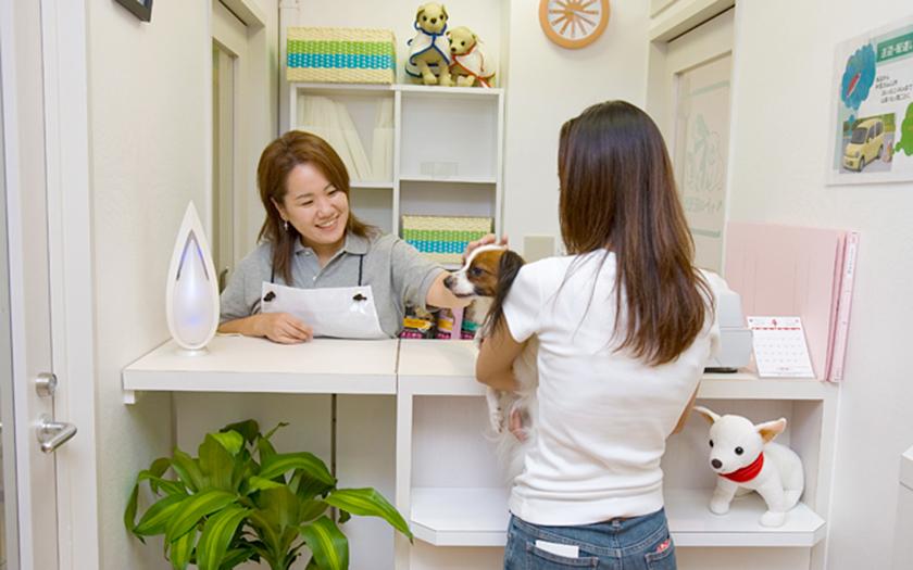 犬が好き! から始まった、ペットと関わりつづける仕事。