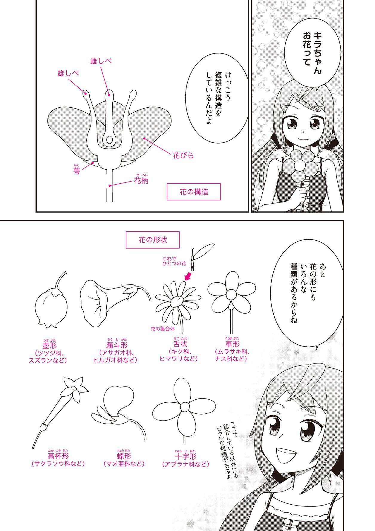 漫画の背景や効果に使える花の描き方 イラストマンガ描き方ナビ