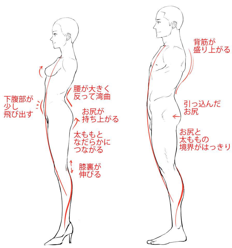 図解すぐにわかる男女の特徴の付け方描き分け イラストマンガ
