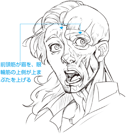 感情の数だけ表情がある作例と図解で豊かな表情をマスターしよう