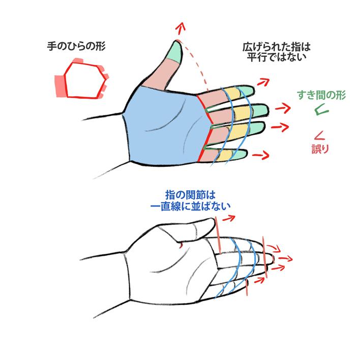 構造を意識する!立体的な手と足の描き方講座 | イラスト・マンガ描き ...