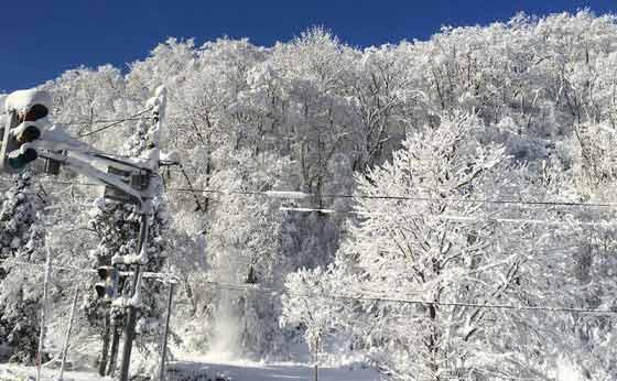 スキーブーム到来!!!