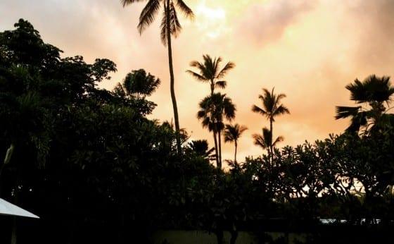 本当は美味しい裏ハワイ