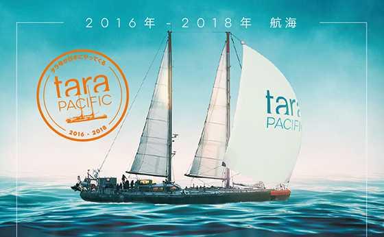 フランスの科学探査船タラ号が日本にやってくる