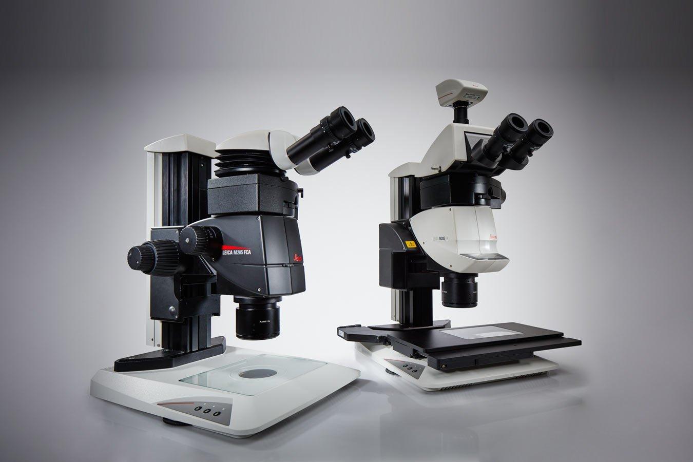 蛍光実体顕微鏡
