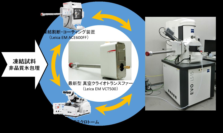 (申込受付終了)第9回(2018年度 第3回)ABiS電子顕微鏡トレーニング<br>クライオ試料作製・観察 ~最新クライオSEMシステムによる含水試料の観察とEDS分析~