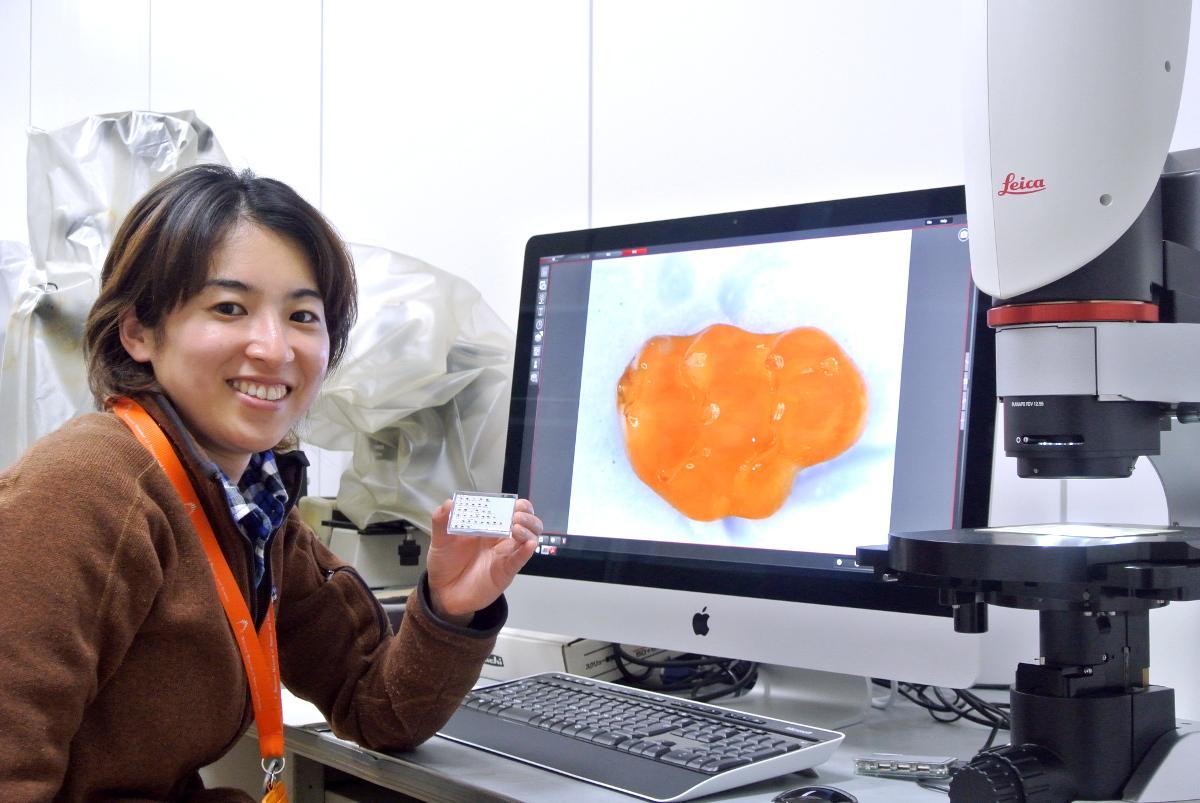 デジタルマイクロスコープ観察事例/小型哺乳類の化石が教えてくれる進化のプロセス