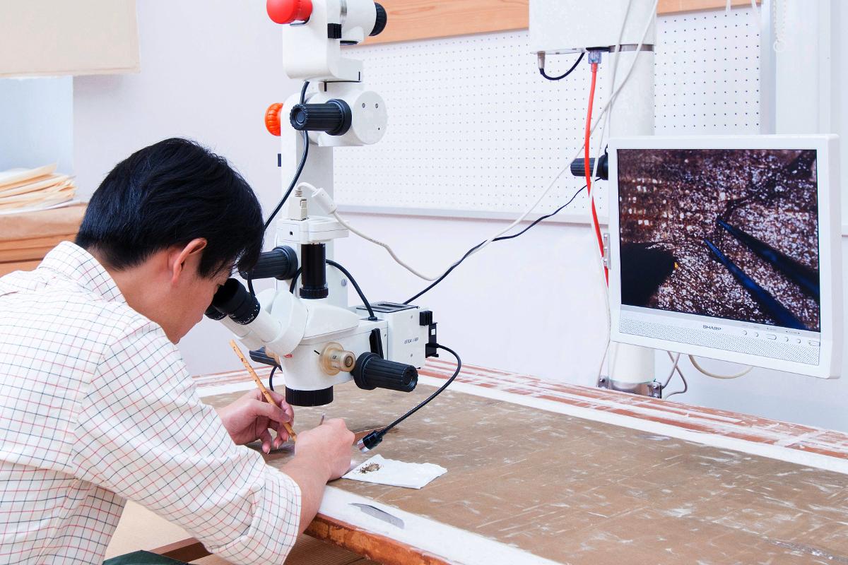 実体顕微鏡観察事例/重要文化財の保存修理を専門に行う修理技術者集団